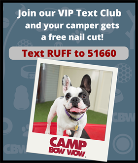 Join our VIP Text Club and your camper gets a free nail cut! Text RUFF to 51660.