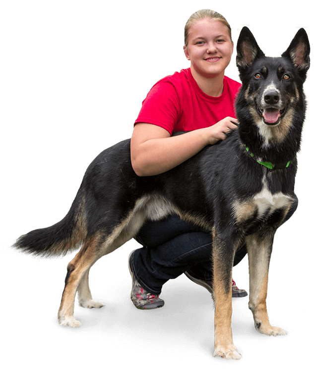 image of a dog with a girl